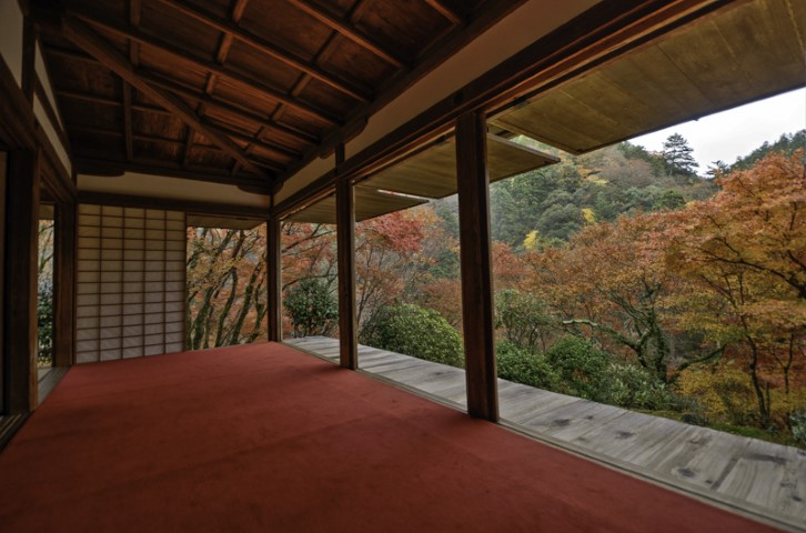 Autumn foliage, Kyoto